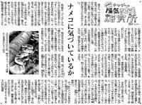 2016南日本新聞連載「陽気な方法研究所」12〜14話