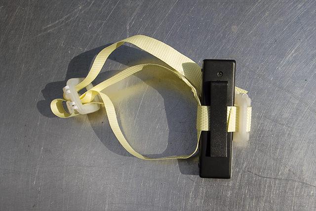 3000円のネコカメラ