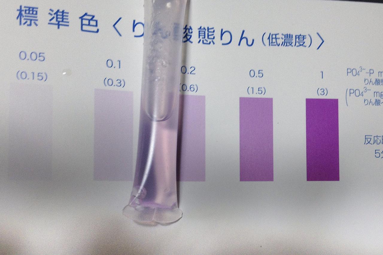 47億円に匹敵?! DIYで下水の汚染度チェック!